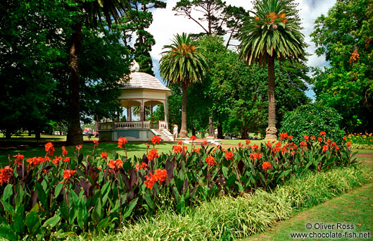Auckland Domain, New Zealand