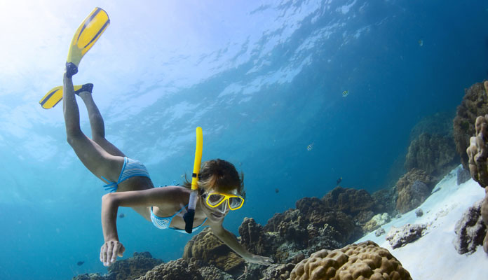 Want to Go Snorkelling