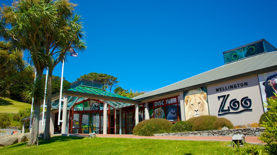 wellington zoo main door