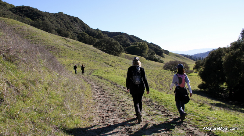Hiking Enjoy The Beauty Of California This Year