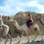 Egypt - camel, jeep safaris, adventure camping