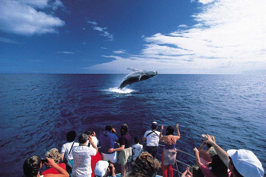 Maui-Hawaiian-archipelago