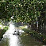 Southern Canal du Midi (France)