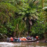 Travel adventure in Ecuador's Amazon Rainforest