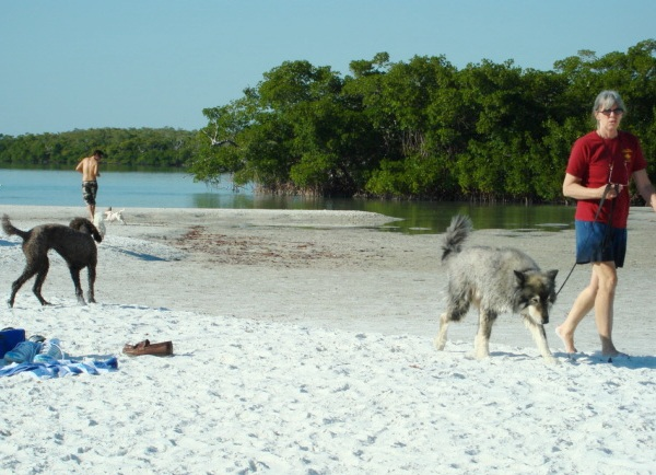 Pet Friendly Bonita Springs, FL