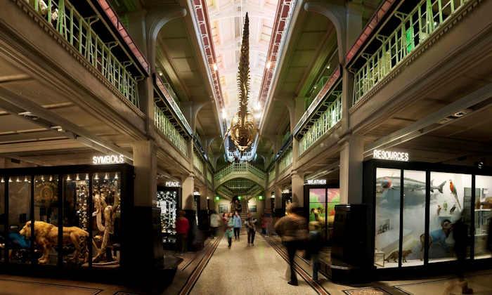 Manchester-Museum-England
