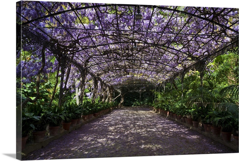 Concepcion-Botanical-Garden-Andalusia