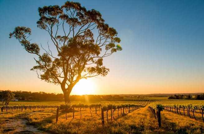Itinerary-Australian